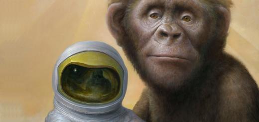 """Chris Leib: """"En 'El planeta de los simios' yo apoyaba a los monos, los humanos eran crueles"""""""